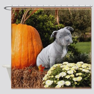 Halloween pitbull puppy Shower Curtain