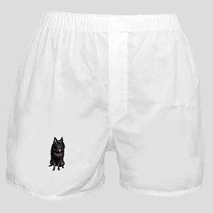 Schipperke (A) Boxer Shorts