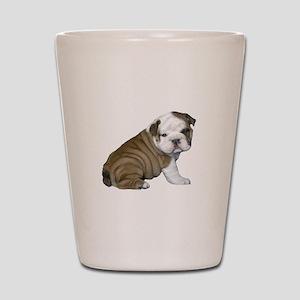 English Bulldog Puppy1 Shot Glass