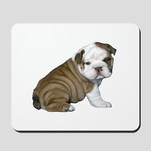 English Bulldog Puppy1 Mousepad