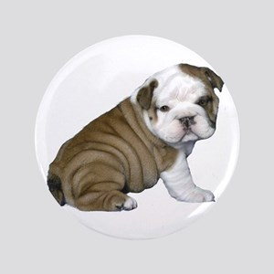 "English Bulldog Puppy1 3.5"" Button"