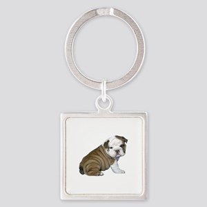 English Bulldog Puppy1 Square Keychain