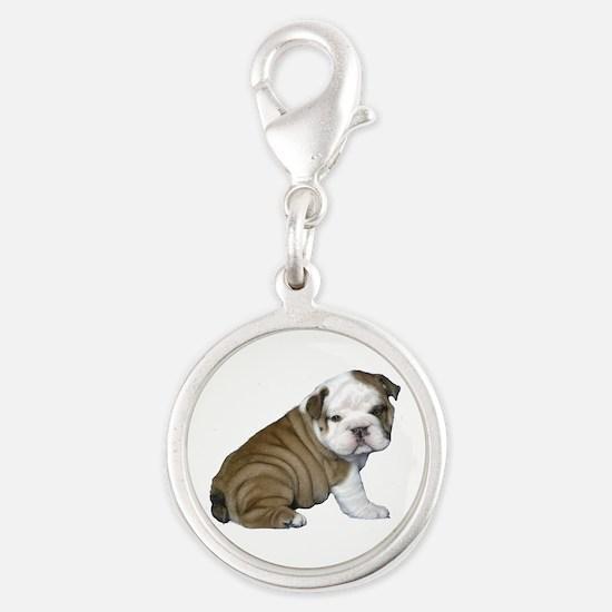 English Bulldog Puppy1 Silver Round Charm
