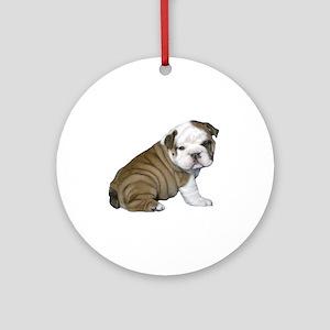 English Bulldog Puppy1 Ornament (Round)
