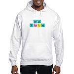 SCIENCE SHIRT NO FARTING T-SH Hooded Sweatshirt