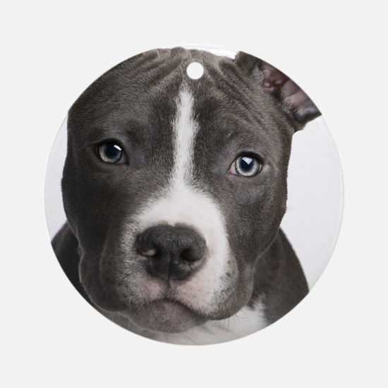 Pitbull Lovers Round Ornament