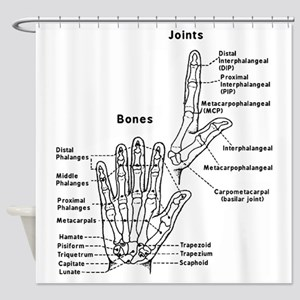 hand anatomy Shower Curtain
