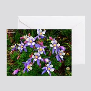 Greeting Cards (Pk of 10) Columbines A8