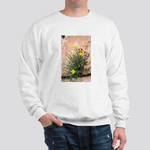 Flowering Rock Sweatshirt