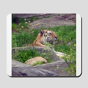 tiger 5 Mousepad