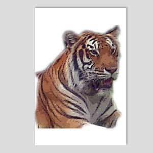 tiger 6 Postcards (Package of 8)