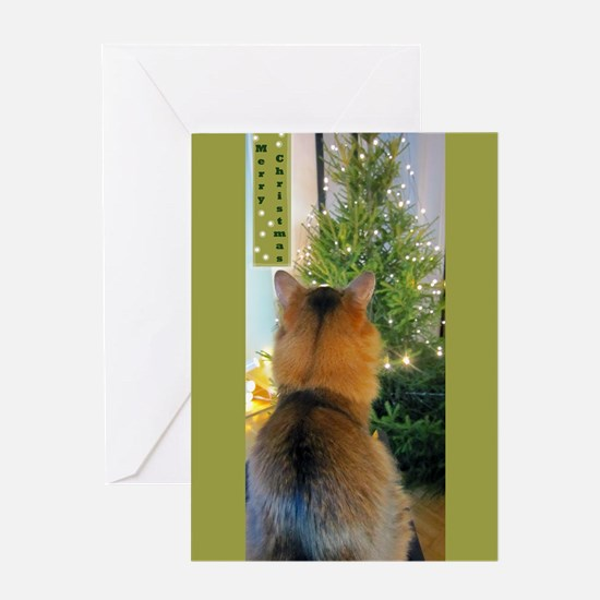 Cat And Christmas Tree Greeting Cards