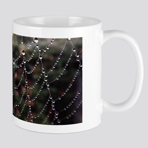 Dew On A Spiderweb Mugs