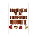 Looking for Chocolate Mini Poster Print