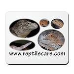 Reptilecare Mousepad