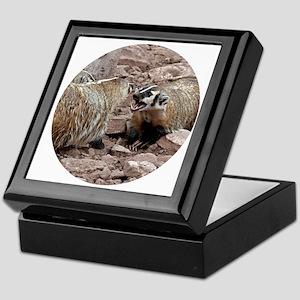 Snarling and Fierce Badgers Keepsake Box