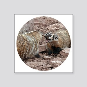 "Snarling and Fierce Badgers Square Sticker 3"" x 3"""