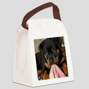 Rottweiller Puppy Canvas Lunch Bag