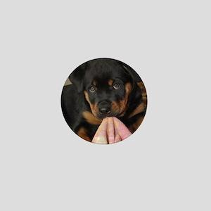 Rottweiller Puppy Mini Button
