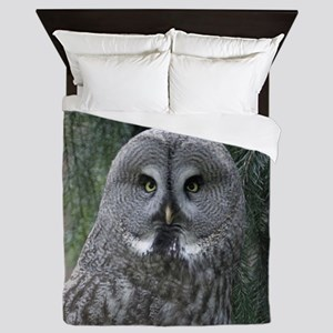 Owl002 Queen Duvet