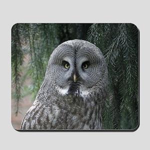 Owl002 Mousepad