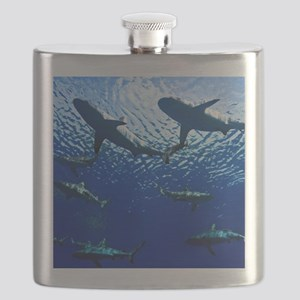 Sharks Underwater Flask