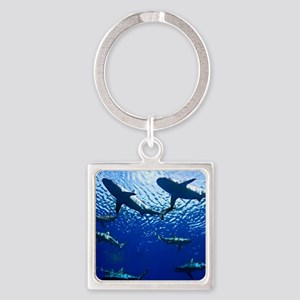 Sharks Underwater Square Keychain
