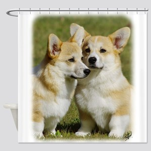Welsh Corgis Pembroke AF033D-055 Shower Curtain
