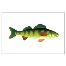 Yellow perch 2 Posters