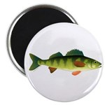 Yellow perch 2 Magnets