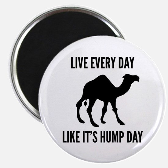 Live Every Day Like It's Hump Day Magnet