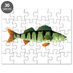 European perch Puzzle