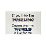 Autism Puzzle Rectangle Magnet (10 pack)
