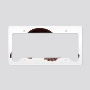 platypus2 License Plate Holder
