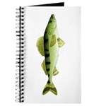Zander pike perch Journal