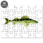 Zander pike perch Puzzle