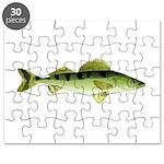 Zander pike perch Puzzle