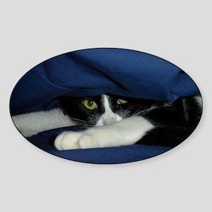 animals 036 Sticker (Oval)