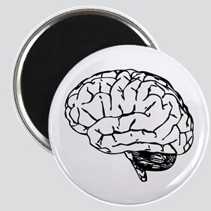 Brain Magnets