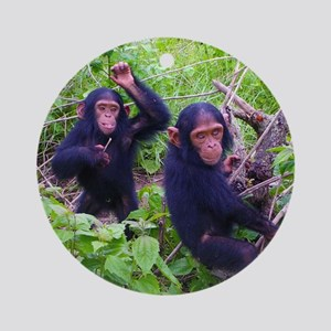 Two Chimps Playing Round Ornament