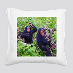 Two Chimps Playing Square Canvas Pillow