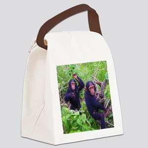 Two Chimps Playing Canvas Lunch Bag