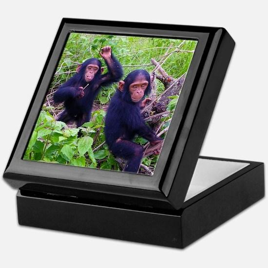Two Chimps Playing Keepsake Box
