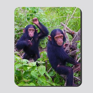 Two Chimps Playing Mousepad
