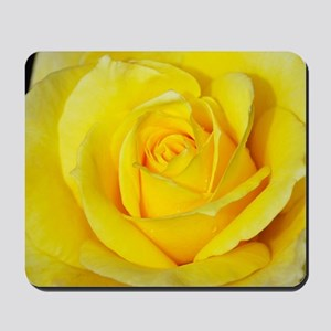 Beautiful single yellow rose Mousepad