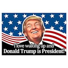 Waking Up Donald Large Poster