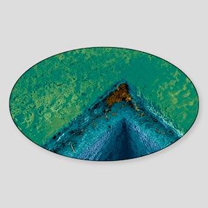 Dirty corner Sticker (Oval)
