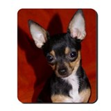 Chihuahua Classic Mousepad