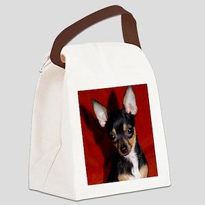 Abbey3-10x10 Canvas Lunch Bag