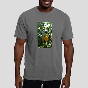 Lemons of Sorrento, Italy T-Shirt